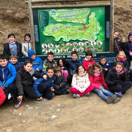 Els alumnes de Cicle Mitjà visiten el Parc Molló