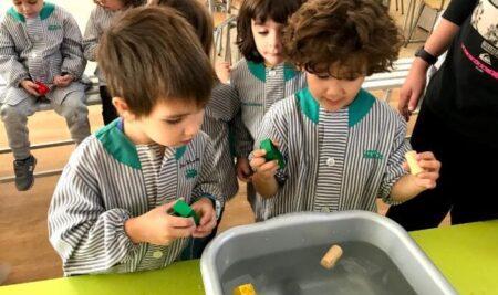 Dia de la Ciència Educació Infantil